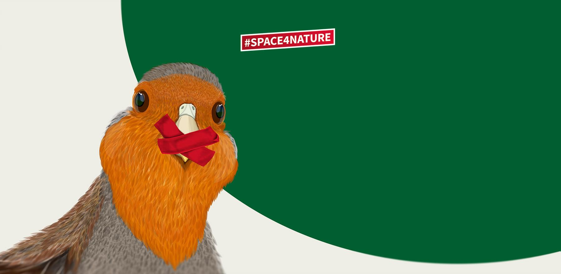 The grey partridge is at risk - let's get loud!