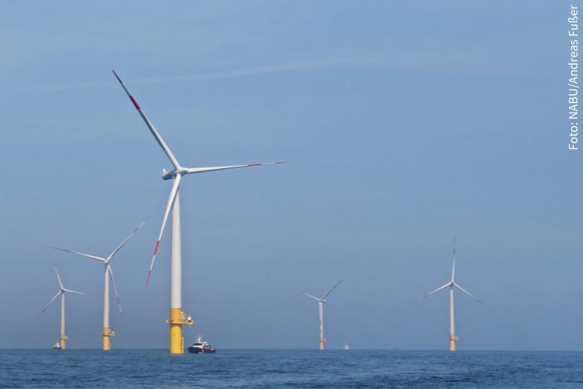 Wir brauchen einen naturverträglichen Ausbau der Windenergie