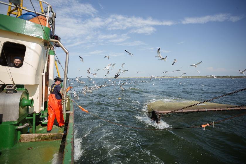 Fischerei in der Ostsee