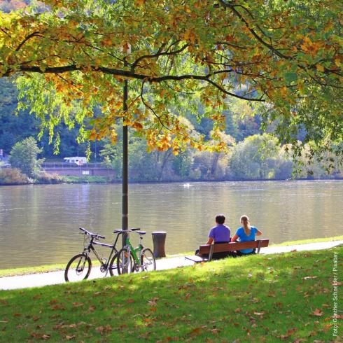Ein Paar sitzt auf einer Parkbank im Grünen