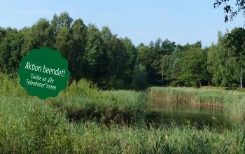 Rettet das Naturparadies am Flughafen Tegel!